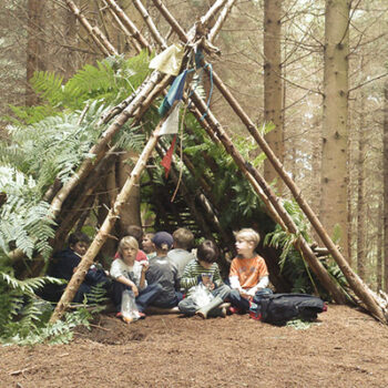 Kids building a den in the woods